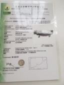 香港玉器證書9